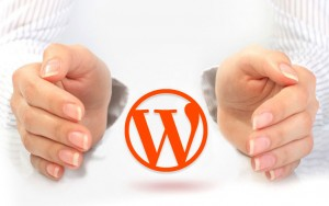 Serviço de Suporte Premium para WordPress